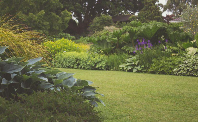 Ihr Garten im Sommer